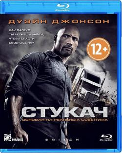 Стукач / Snitch (2013) BDRip-AVC